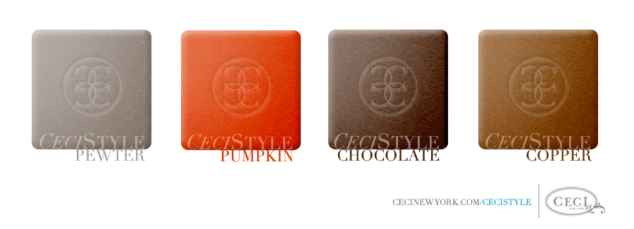 Ceci's Color Stories - Pewter & Pumpkin Wedding Colors - color swatches, t****