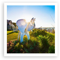 V208: Great Escapes – The White Elephant Hotel, Nantucket, Massachusetts