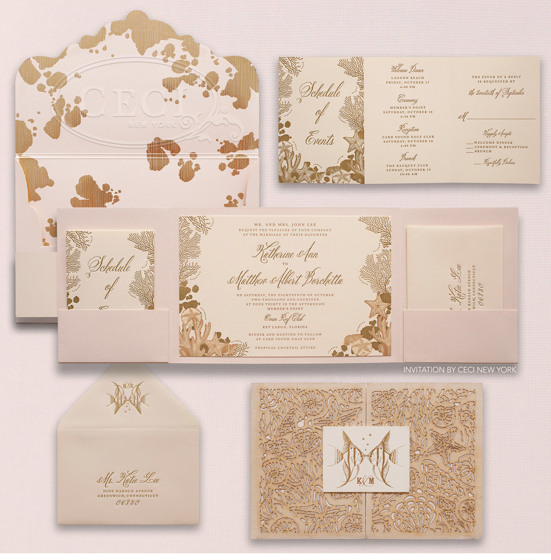 V235 Our Muse Glamorous Florida Wedding Katherine Matthew Part 1