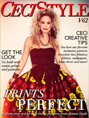 CeciStyle Magazine V62: Prints Perfect
