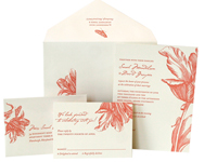 Parrot Tulip - Botanical - Ceci Ready-to-Order Collection - Ceci Wedding - Ceci New York