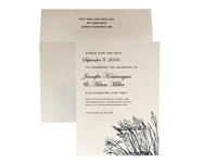 Beachgrass - Save the Dates - Ceci Ready-to-Order Collection - Ceci Wedding - Ceci New York